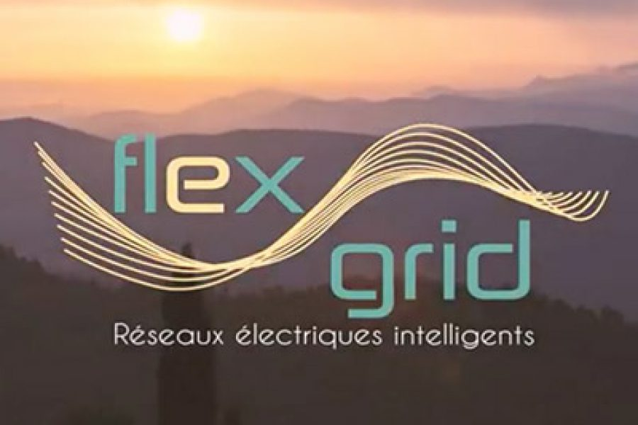 Le programme FLEXGRID en images