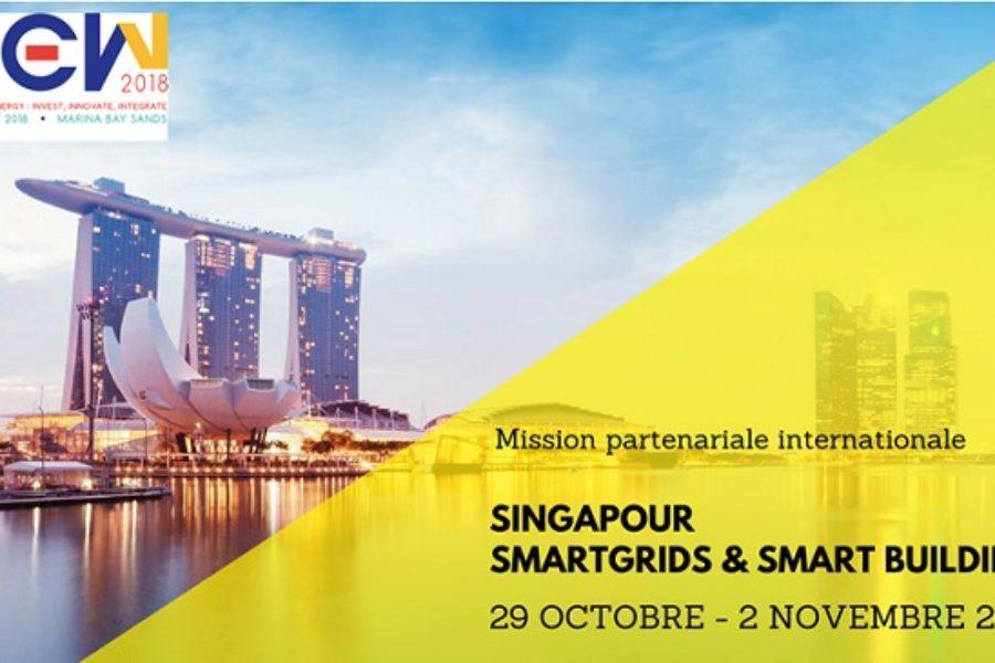 Appel à manifestation d'intérêt pour la Mission Smart Grids/Smart Building à Singapour