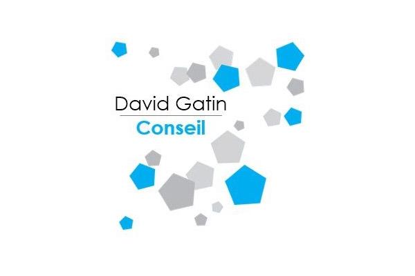 David Gatin Conseil