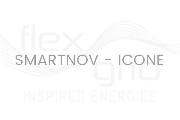Smartnov – Icone