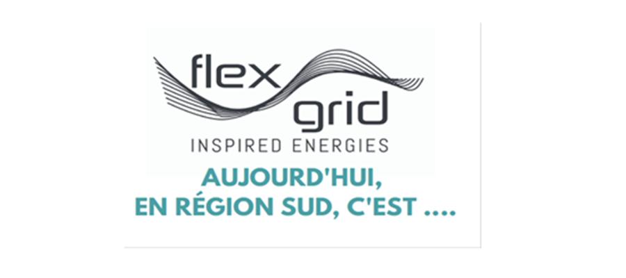 Bilan des 3 premières années du Programme FLEXGRID